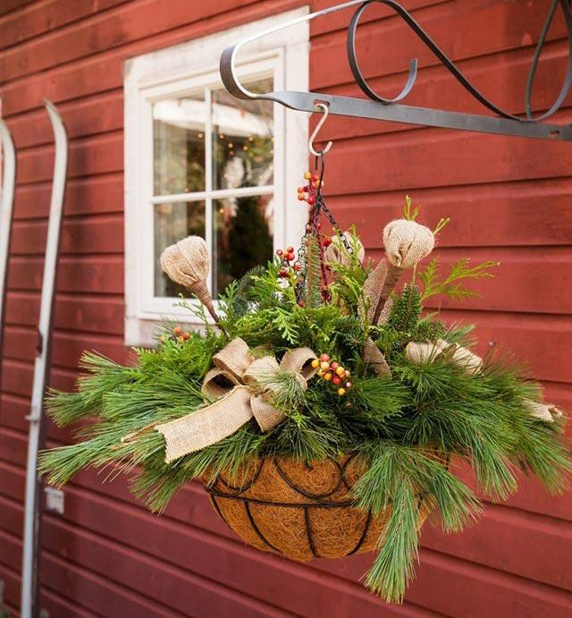 Holiday Hanging Basket