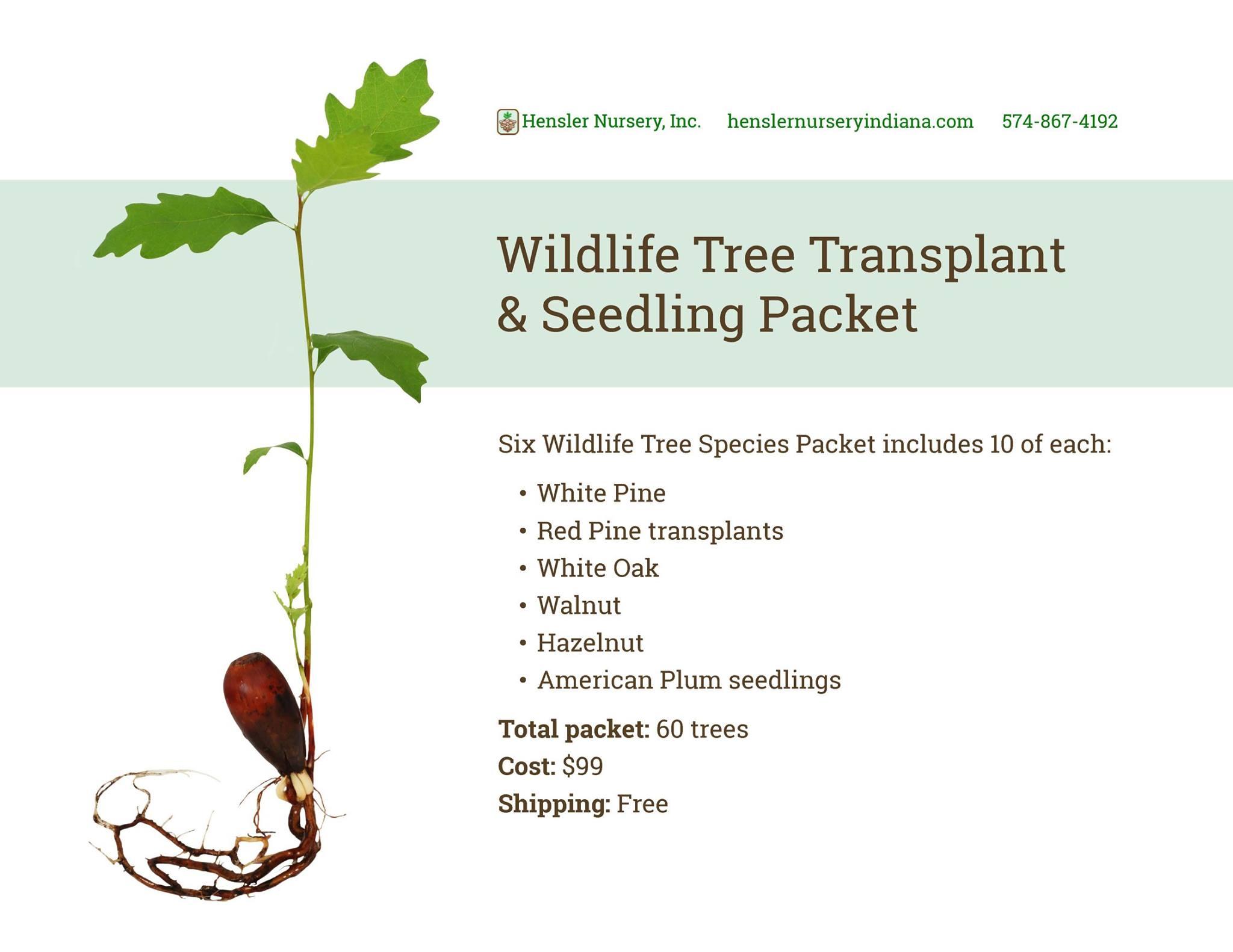 Wildlife Tree Transplant and Seedling Packet