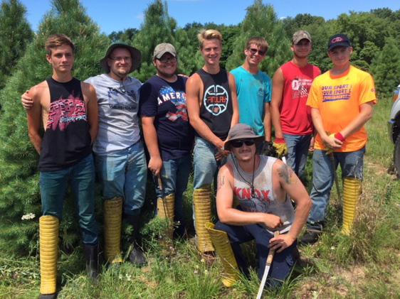 Hensler Nursery Shearing Crew